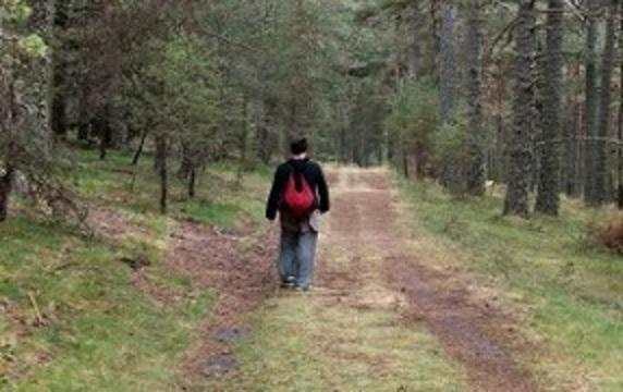 Un Camino Llamado Miedo